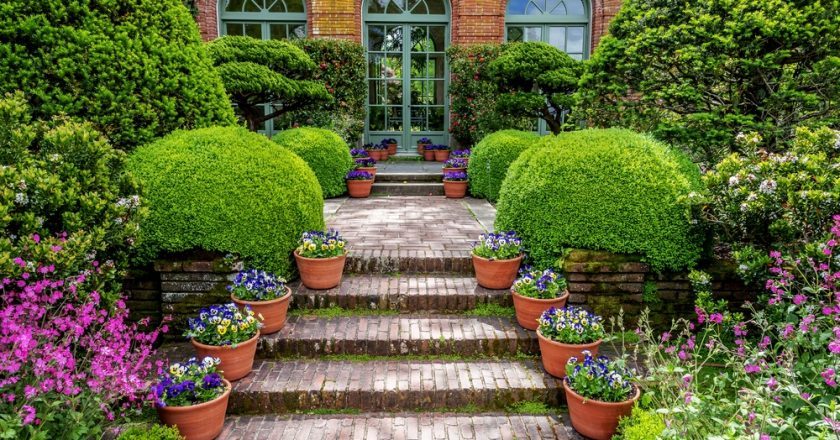 Top Tips For Getting The Most Out Of Your Garden