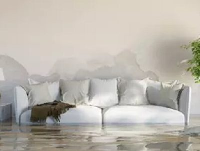 5 reasons to hire a water damage restoration professional